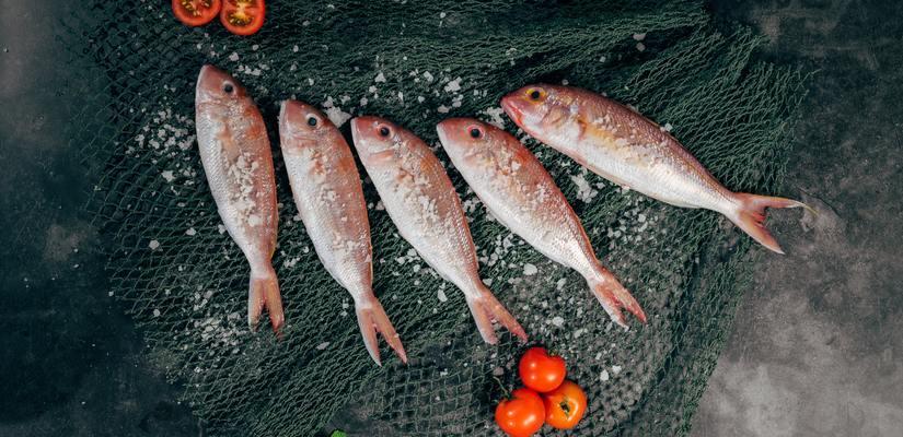 всяка риба